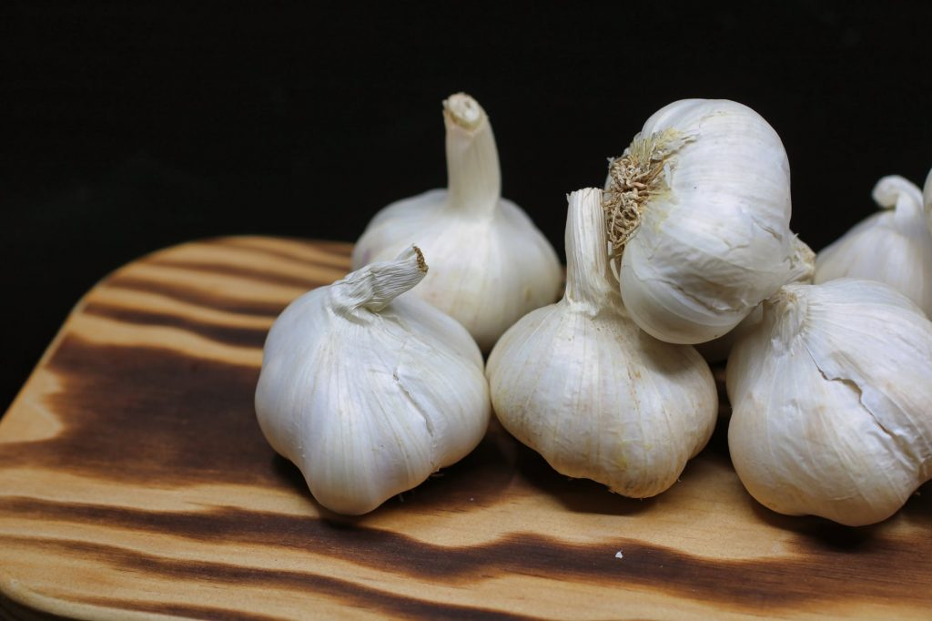 Garlic as a deterrent for groundhogs