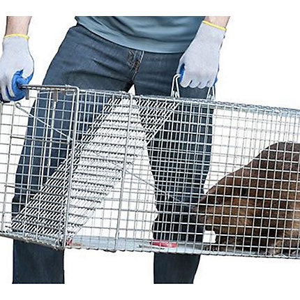 Handle this Groundhog trap with gloves and great care.