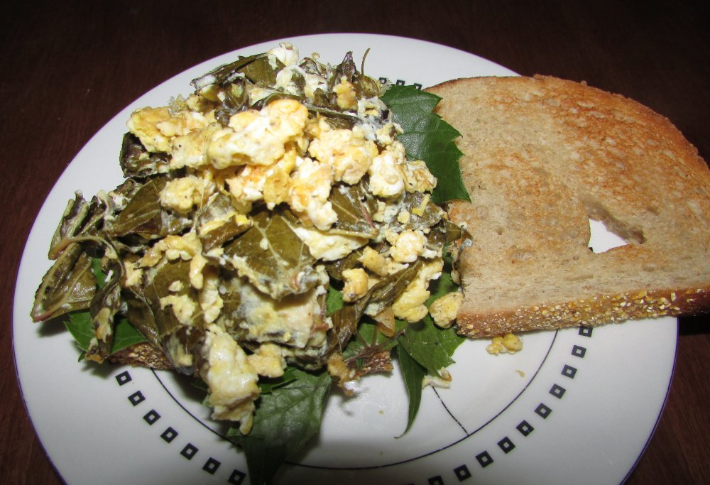Scrambled Eggs Sauteed with Chopped Wild Grape Leaves